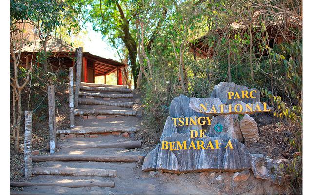 Мадагаскар – остров лемуров. Часть 3: Перед пешим походом на нас надели специальное снаряжение для крепления безопасных ремней. Но скажу, что я его надела еле-еле и