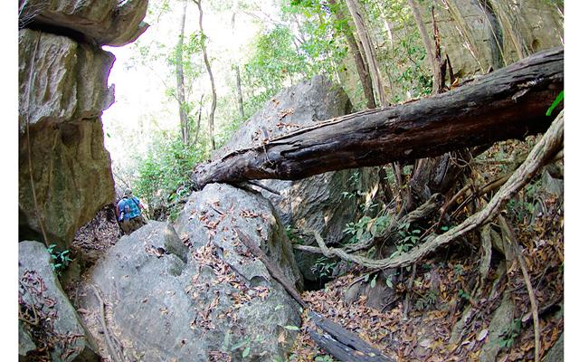 Мадагаскар – остров лемуров. Часть 3: Потом началась нелегкая дорога вдоль скал с постепенным поднятием наверх. Приходилось постоянно скакать с камня на камень и иногда помогать