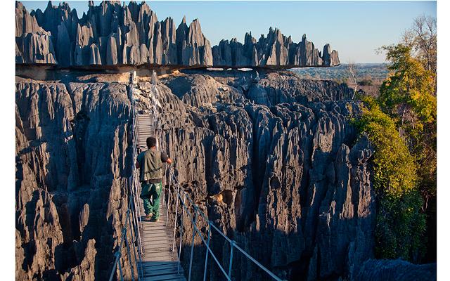 Мадагаскар – остров лемуров. Часть 3: Дениска идет над пропастью (не мать, а ехидна!)