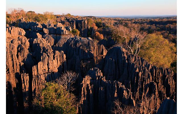 Мадагаскар – остров лемуров. Часть 3: С одной площадки мы увидели лемуров сифака, как они легко прыгают по скалам, возвращаясь из леса в скалы на ночевку.