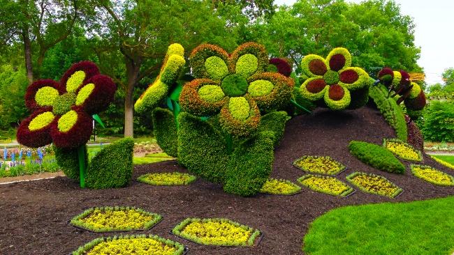 Фигуры из цветов в саду своими руками