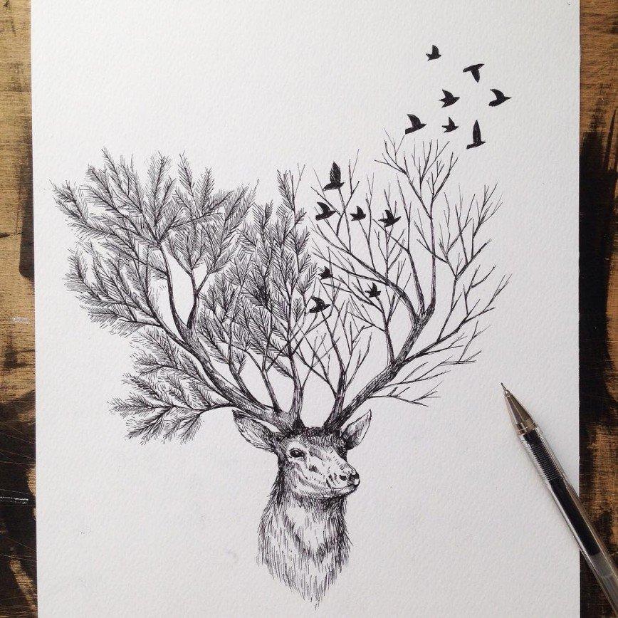 Животные и растения в рисунках Alfred Basha