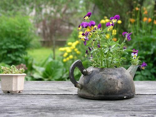Идеи для Вашего сада.: