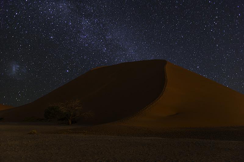 Такая разная пустыня