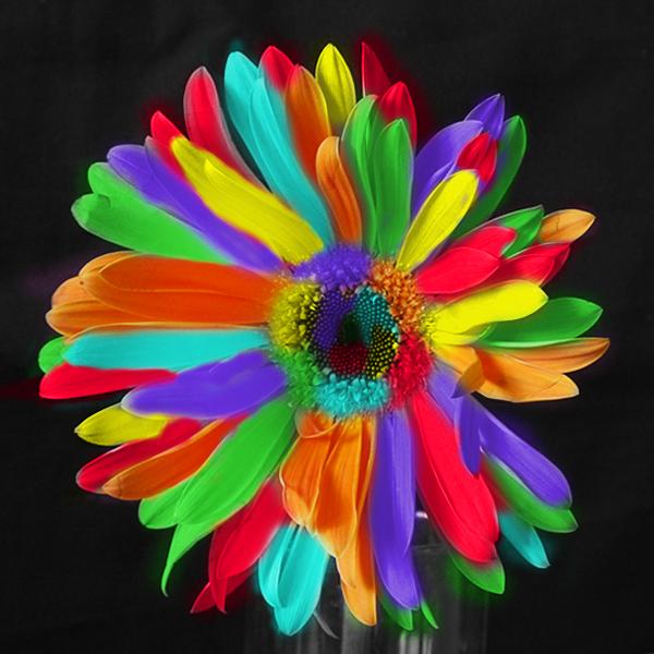 цветик семицветик цветок раскраска