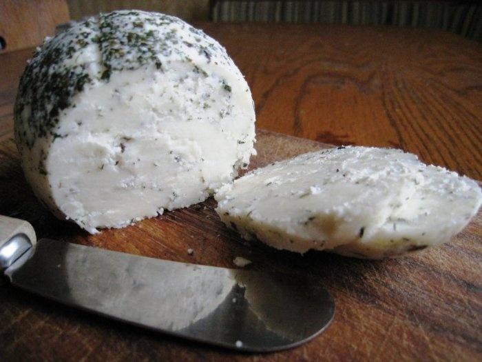 Как приготовить козий сыр в домашних условиях с фото