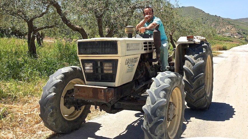 Сицилия для плантатора