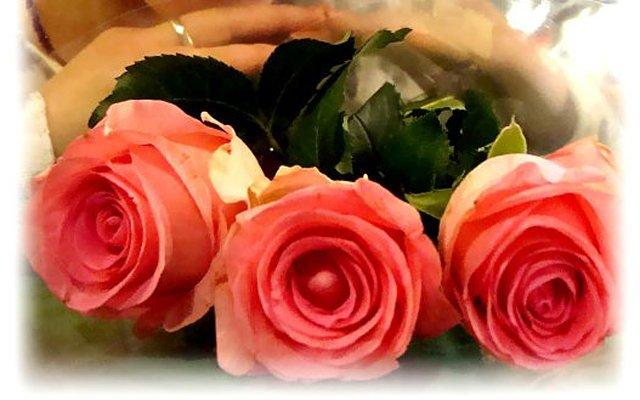 Три розы дивного нежного цвета