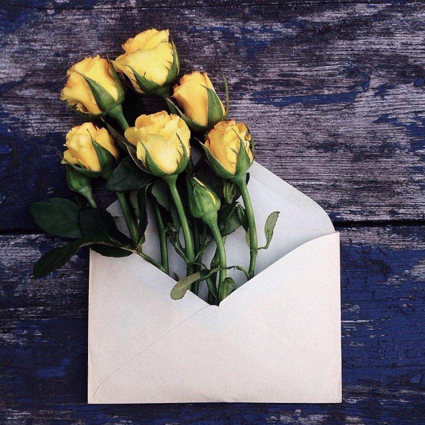 Цветы в конвертах – необыкновенный проект Анны Ремарчук