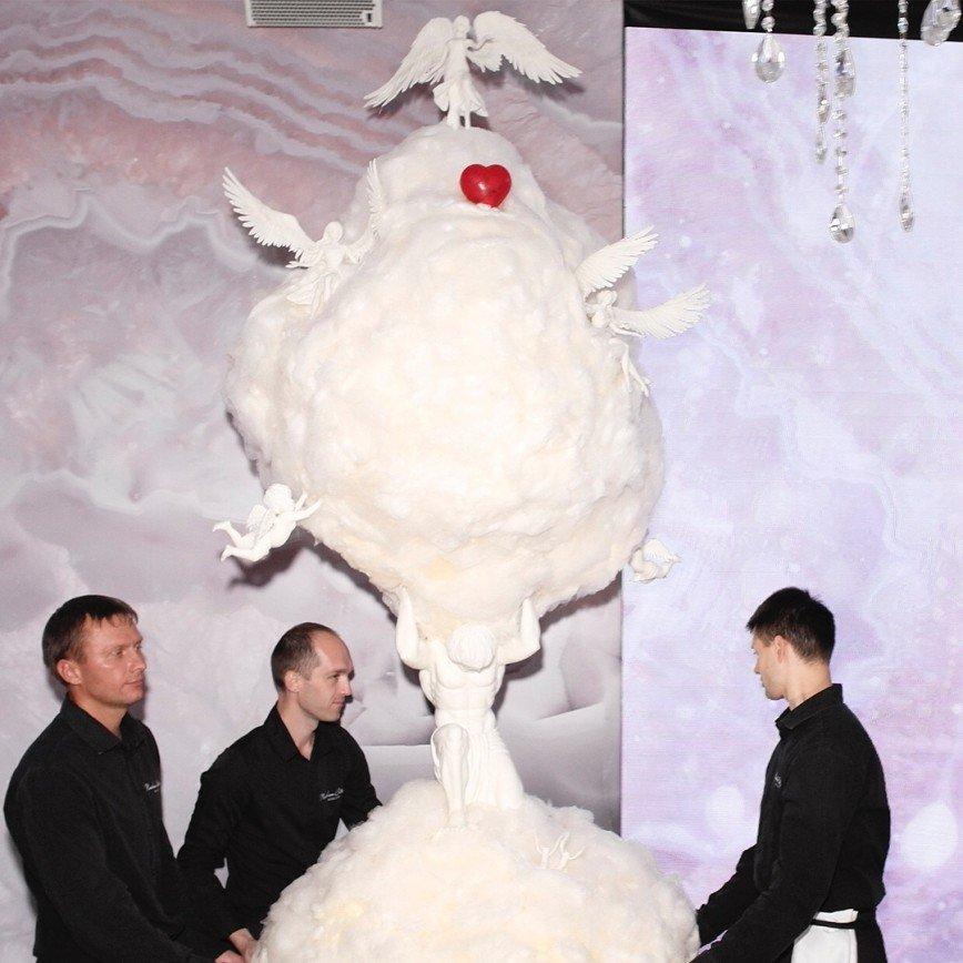оборудование, правовые торт на венчании яны рудковской статья