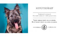 Социальная реклама о бездомных собаках