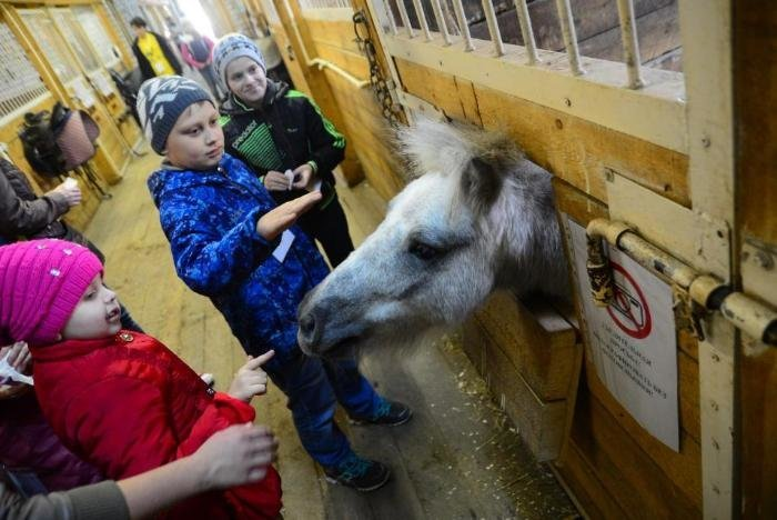 Первая в России реабилитационная смена для сиблингов