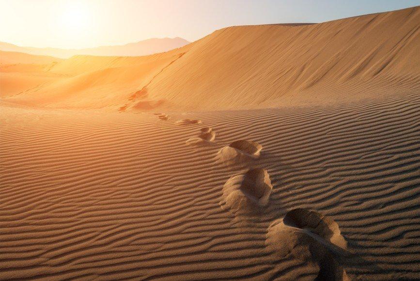 Пятизвездочный курорт откроют в пустыне