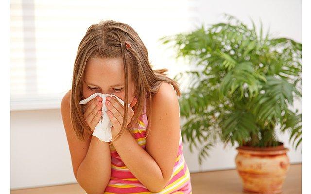 аллергия в квартире как узнать на что