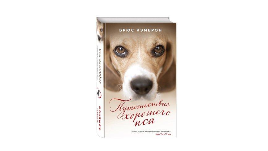 Отрывок из книги «Путешествие хорошего пса»