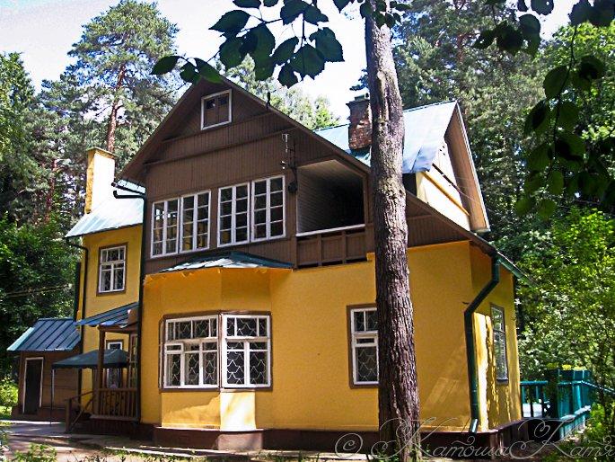 дом-музей чуковского музей фото