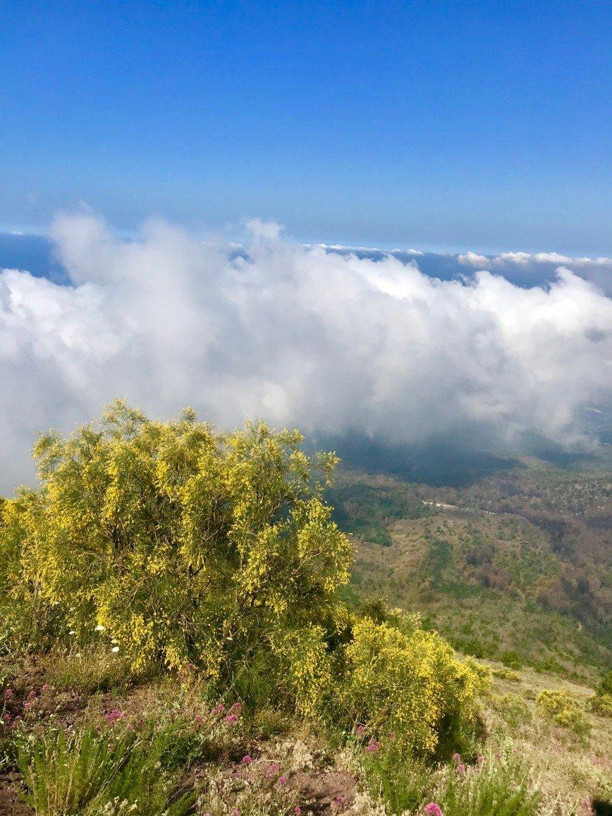 Автор: phonix, Фотозал: Туристические зарисовки, Вид с горы Везувий