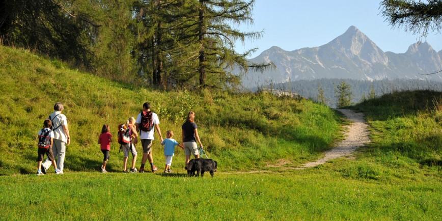 Пешие прогулки избавляют от лишнего веса лучше спортзала