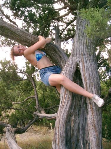 жизнью прибить фото к дереву головою вниз отомстить новомодное устройство
