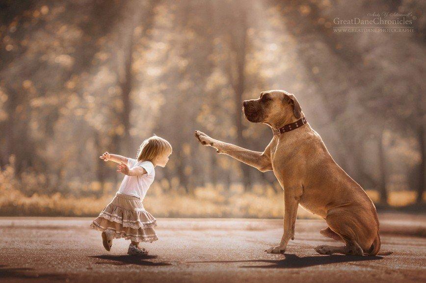 «Маленькие дети и их большие собаки» Энди Селиверстова: