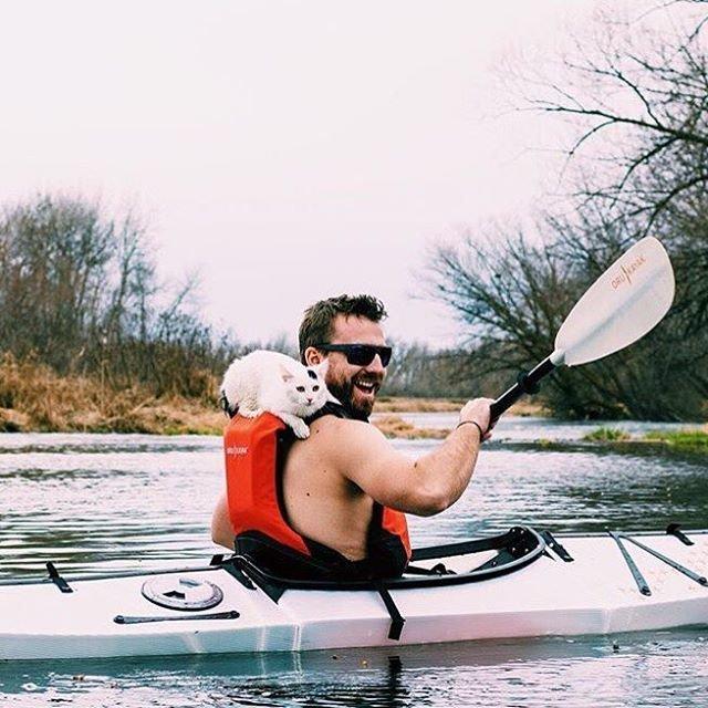 Instagram вдохновит вас отправиться в поход со своей кошкой