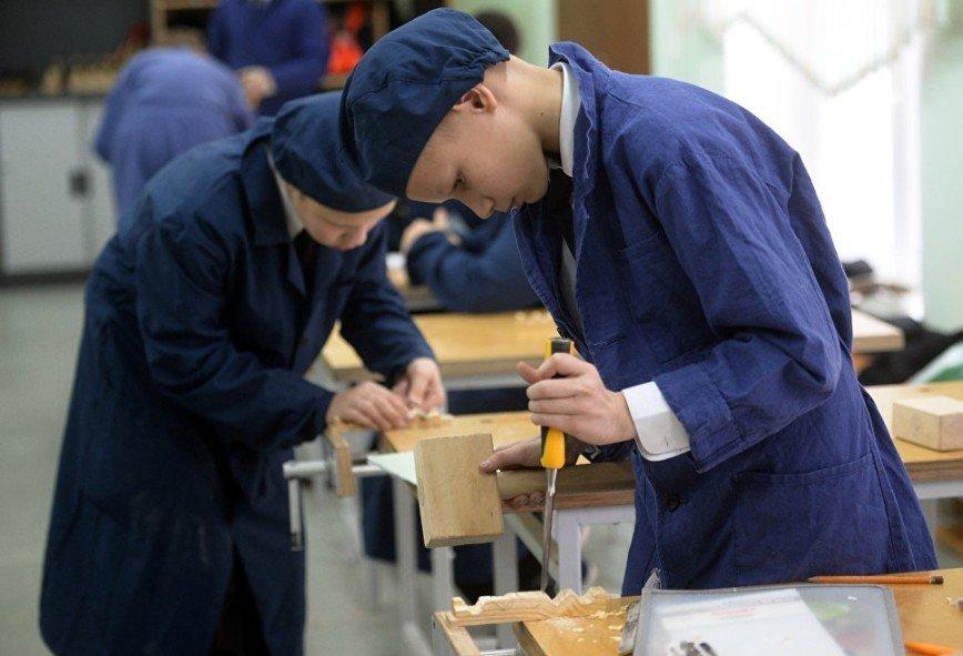 Сенаторы внесли законопроект о трудовом воспитании в школе