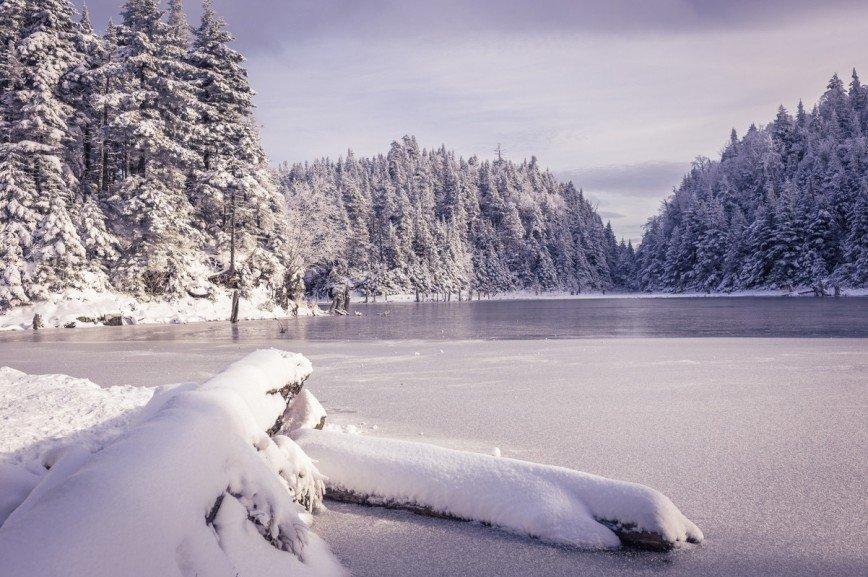 забывайте картинка зима круче представлены лишь одной
