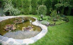Идеи оформления дачного водоема