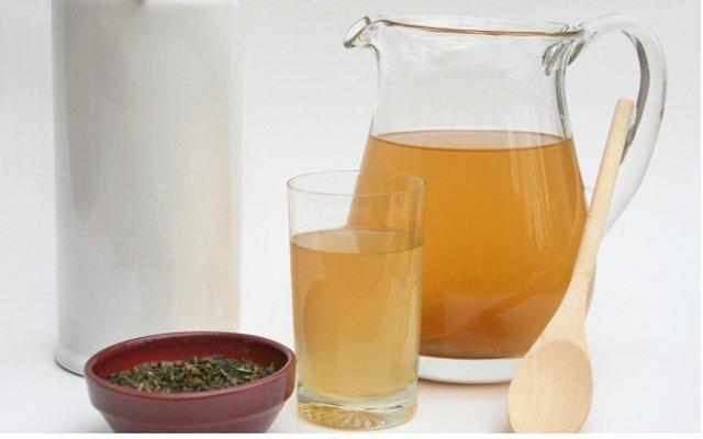 Польза чайного гриба