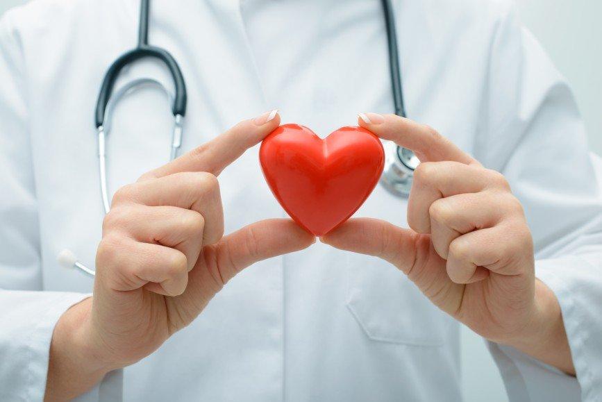 Ученые вырастили человеческое сердце в лабораторных условиях