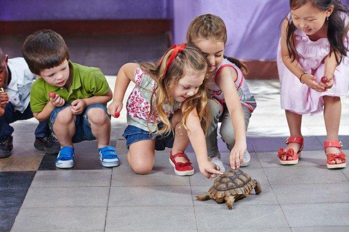 Московский зоопарк организовал свой лагерь