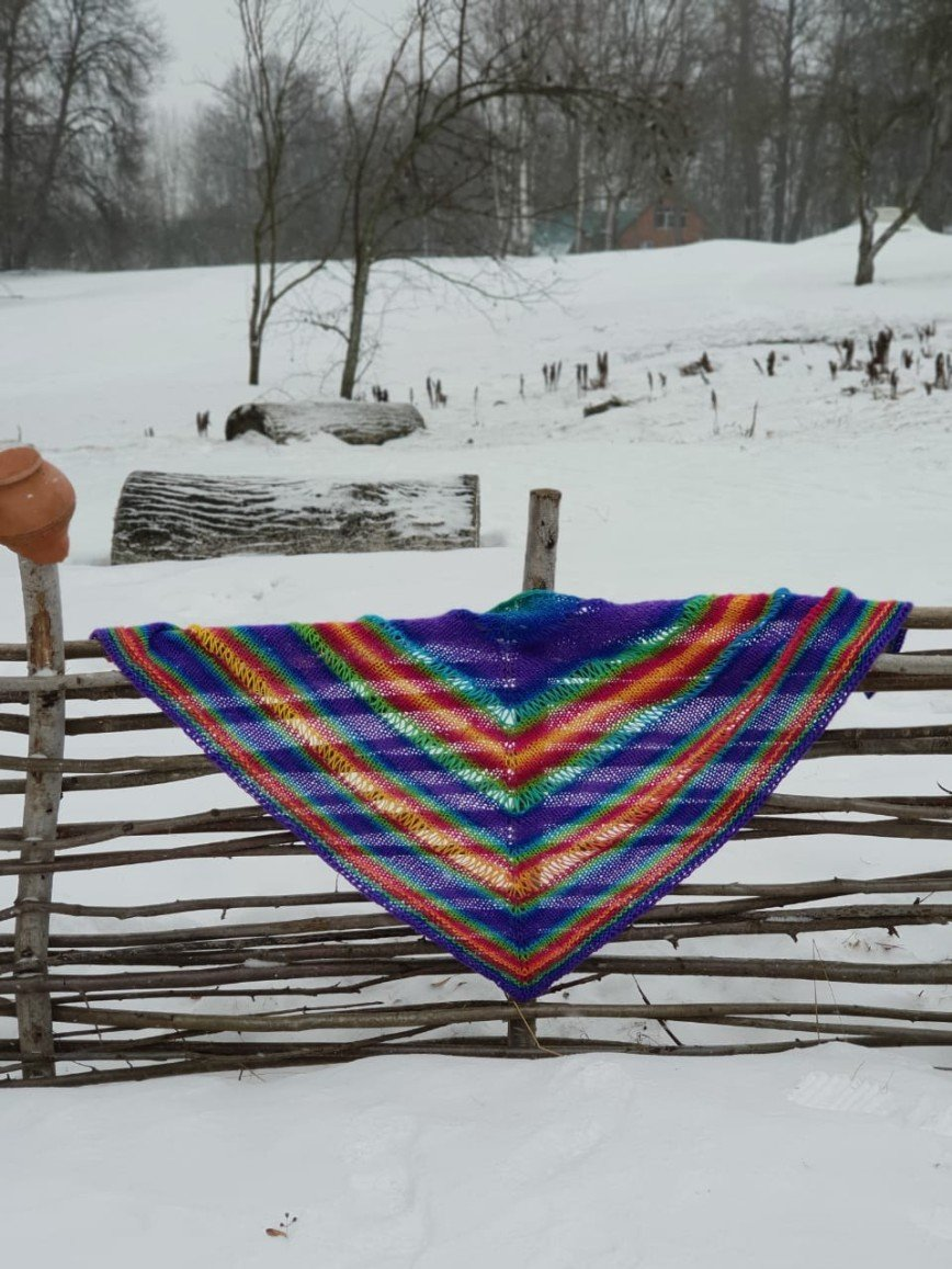 Автор: ИвИва, Фотозал: Мое хобби, Я назвала ее Радугой. И зимний день сразу стал ярче даже в метель.
