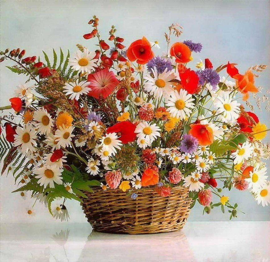 Открытки, открытки с днем рождения полевые цветы фото
