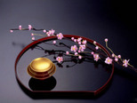Сакура – символ благополучия