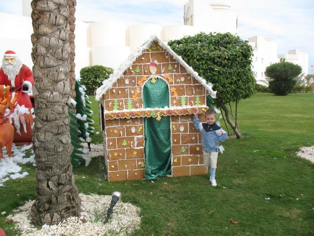 на Рождество 2007г.