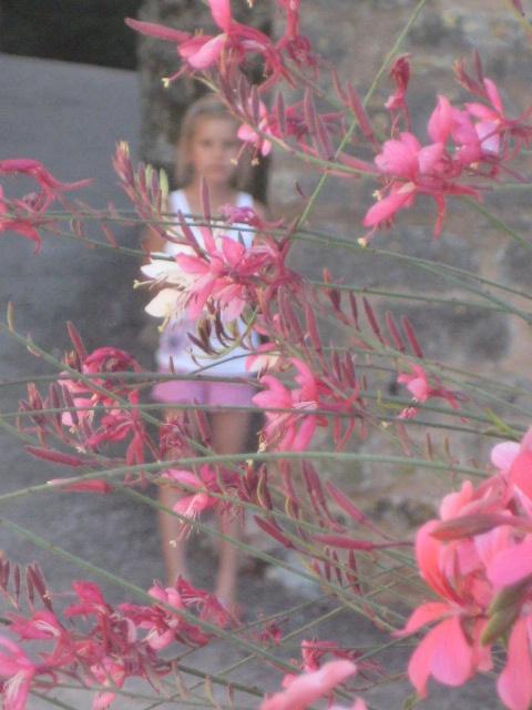доченька. и загадочные цветы