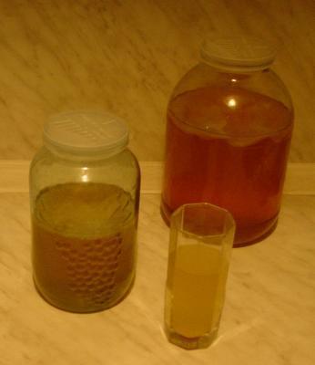ЧАЙНЫЙ ГРИБ Чайный гриб, он же: чайная медуза, морской гриб, японский гриб, маньчжурский гриб, японская губка, японская матка, чайный квас, Фанго, кам-бу-ха – хорошо известен  в  России. Научное название чайного гриба – медузомицет – обусловлено сходством с медузой. Этот гриб в наше время есть во многих домах; уютно устроившись в трехлитровой банке, он перерабатывает раствор чайной заварки и сахара в очень вкусный и  полезный напиток. Сегодня чайный гриб культивируется как в Азии, так и в Европе. Биологически чайный гриб - это  сообщество нескольких микроорганизмов – уксуснокислых  бактерий и дрожжевых грибков. Именно они обеспечивают высокие питательные и целебные свойства чайного гриба, позволяя не только предотвращать, но и лечить самые разные заболевания. Современная медицина относится к чайной медузе по-разному. Одни медики признают гриб, или, во всяком случае, не считают вредным для употребления, другие наоборот совершенно отрицают его целебные свойства.  Что касается специалистов в России и на Западе, то большинство из них глубоко убеждены в положительных возможностях использования чайного гриба. Конечно, такие выводы сделаны были не на пустом месте – проводились обстоятельные научные исследования, взвешивались и оценивались альтернативные мнения и соображения. Для того, чтобы принять верное решение, следует обратиться прежде всего к опыту людей, уже имевшим дело с чайным грибом и получившим от его приготовления и употребления хорошие результаты. ИСТОРИЯ ПОЯВЛЕНИЯ ГРИБА История происхождения чайного гриба по сей день является загадкой. Официальная версия ученых, занимавшихся исследованием истории чайного гриба, такова: родиной его является Цейлон, именно оттуда культура распространилась в Индию, затем в Китай, где гриб рассматривали как верное средство для продления жизни; затем в Маньчжурию и Восточную Сибирь. В наших краях гриб появился в начале 19-го века. Он был завезен как трофей участниками русско-японской войны (во всяком случае, такова основная версия