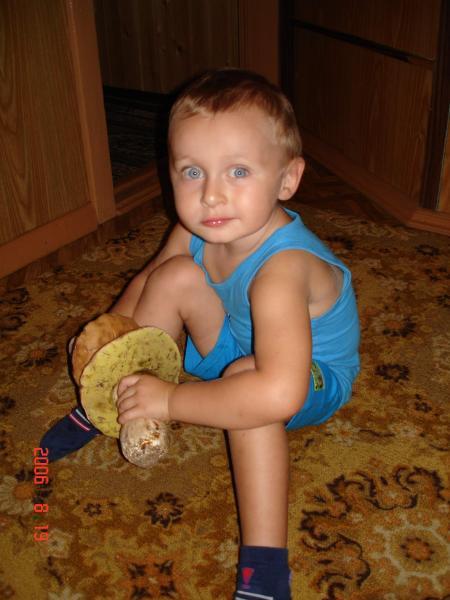 Грибник август 2006