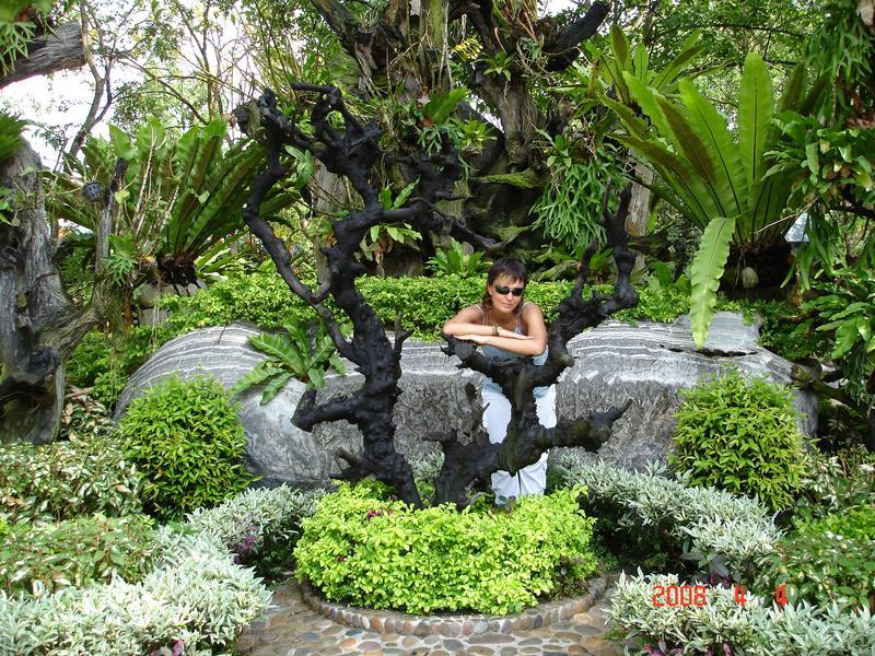 В тропическом саду. Тайланд 2008г