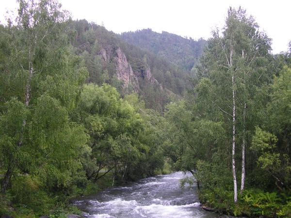 Вид на р.Чемал рядом со скалой Эрлагол