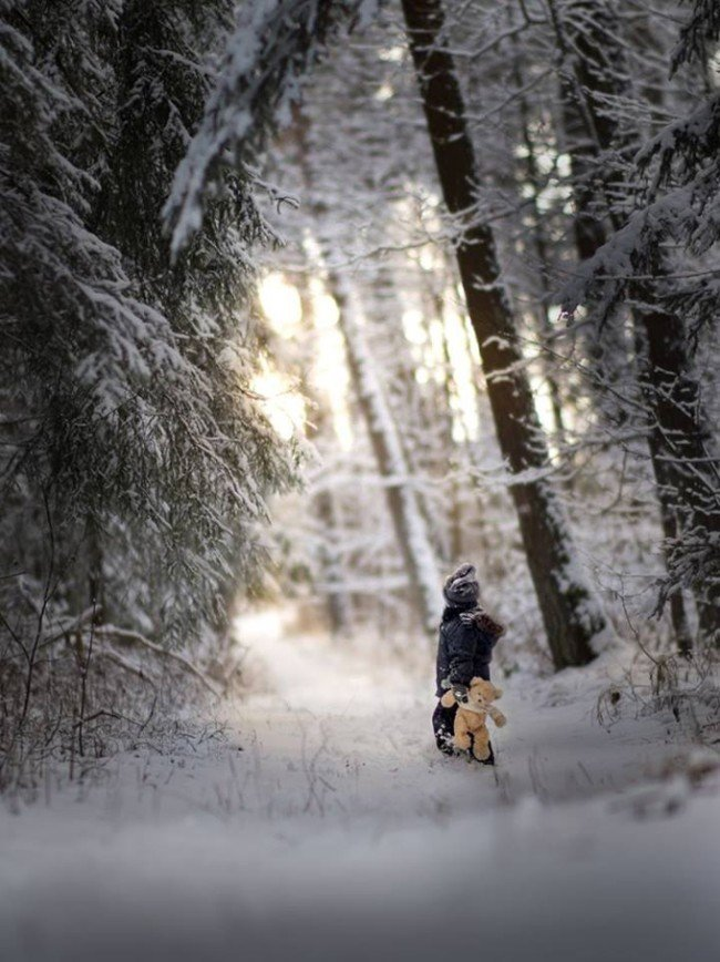 Зимняя сказка Ивоны Подлазиньска