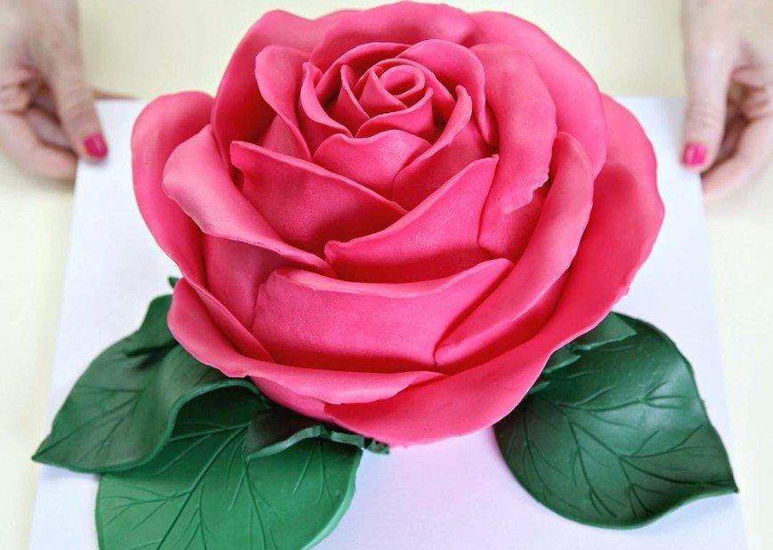 Торт роза картинки