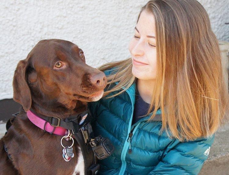 Собачий фотограф Тула из Миннесоты