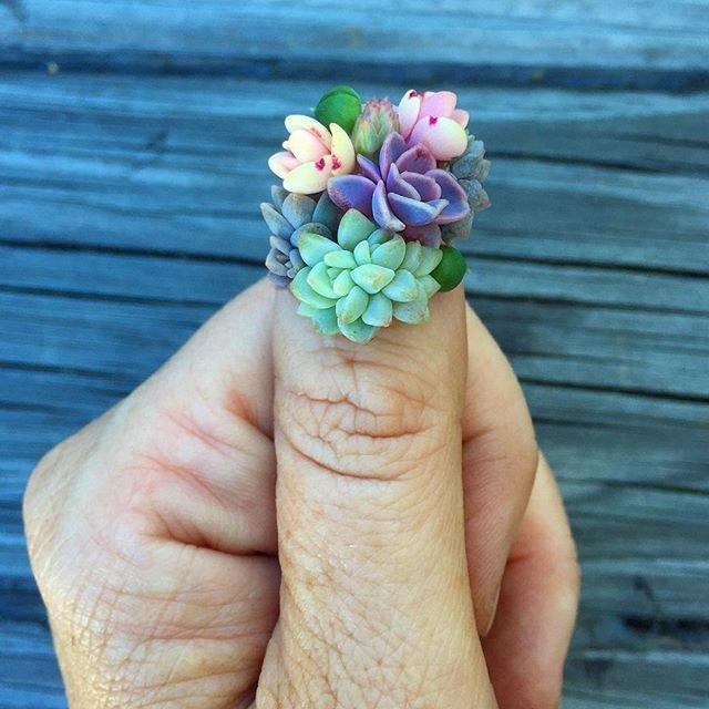 Живые ногти: маникюр с настоящими кактусами