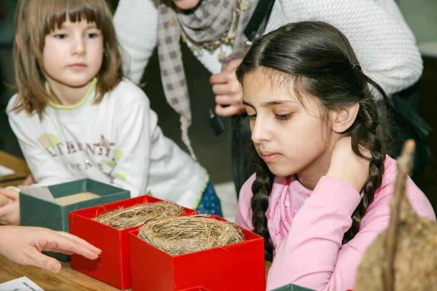 День птиц в Дарвиновском музее