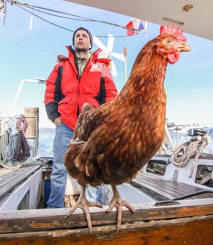 Моряк Гирек и его подруга Моник