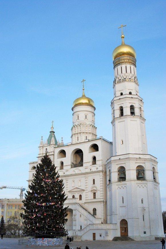Москву украсят более 150 живых елок