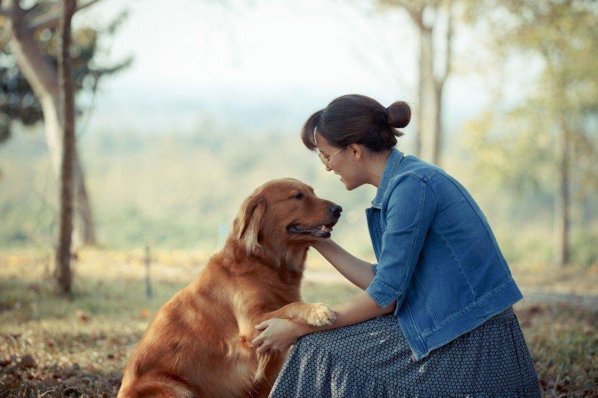 Сердца владельцев собак и их питомцев бьются в унисон