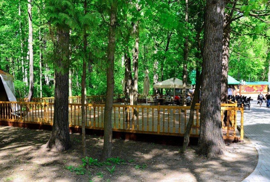 1 мая летний сезон откроют московские зоны отдыха