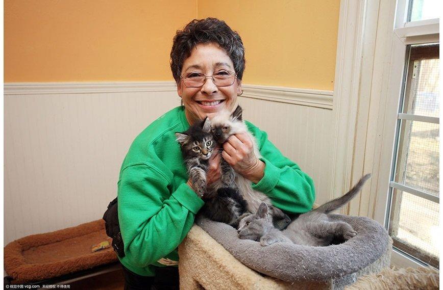 Американка уступила свой дом тысяче кошек